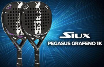 nueva versión siux Pegasus